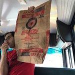 Foto di Scott's Pizza Tours