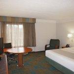 Photo de La Quinta Inn & Suites Tampa Brandon Regency Park