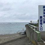 Katsuura Undersea Park Foto