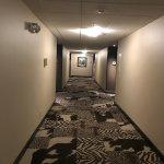 Photo de Hotel 43