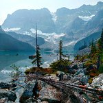 Photo of Waterfowl Lake Campground