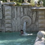 A perfect pool in which to cool down with a Medici crest!