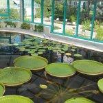 Photo of Liberec Botanical Garden