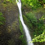 Photo of Horsetail Falls- Columbia River Gorge