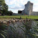 Right down the road-Ross Castle. 15 minute walk.