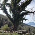 Circuito ad Anello Monte Ceraso