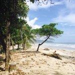 Playa Santa Teresa Foto