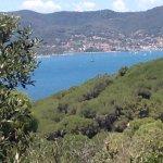 Blick auf die Bucht von Porto Ferraio