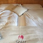 Photo of Hotel Galli