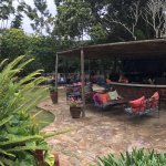 Fresh juice bar in the garden and the pizza oven under the tree