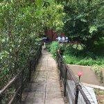 Oliver House bridge