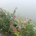 Photo of Great St. Bernard Pass (Col Du Grand St. Bernard)
