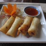 Spring roll starters