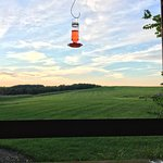 A humming bird feeder on the grounds at the Inne.