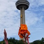 Photo de Skylon Tower