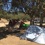 Photo de Camping de la Rivière