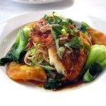 Red Snapper w/ Crispy Rice Scallion Pancake, Bok Choy & Rice Noodles