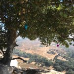Foto de Rancho La Puerta Spa