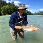 Pink Salmon Squamish River