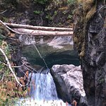 Photo of Little Qualicum Falls Provincial Park