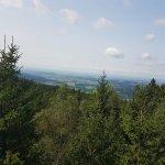Foto de Waldwipfelweg