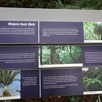 Interpretive Sign at Entrance to Waipiro Bush Walk