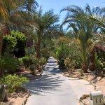 Photo of Sheraton Miramar Resort El Gouna