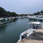 Photo of Puerto Aventuras Marina