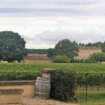 Photo of Chateau de Mole