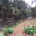 The Yarra River meanders past