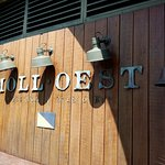 Moll Oest