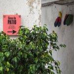 Casa do Patio by Shiadu Photo