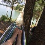hammock-ing