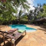 A big nice pool and lush green gardens