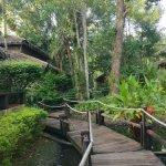 Foto de Centara Koh Chang Tropicana Resort