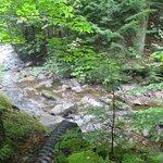 Photo de Spruce Peak at Stowe