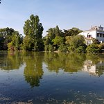 Photo of Parc Borely