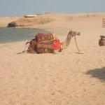 Photo de Sharm El Naga