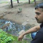 FB_IMG_1503420386615_large.jpg