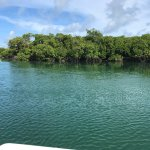 Backcountry and mangroves!