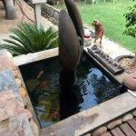 Thabile Lodge Photo