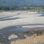 Braided salmon stream