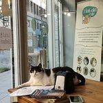 MiaGola Caffe Photo