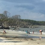 Hunting Island State Park Photo