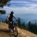Foto de Cog Wild Mountain Bike Tours