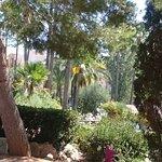 Protur Safari Park Aparthotel Photo