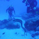 Daivoon Diving Center Photo