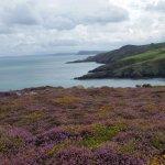Photo of Pembrokeshire Coast National Park