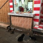 Photo of Fes el-Bali