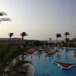 Hilton Sharks Bay Resort Photo